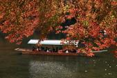 2010日本關西(5)嵐山與桃山:0491.jpg 京都 嵐山