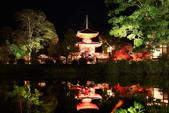 秋之戀(14) 京都秋夜:1153.jpg 京都大覚寺