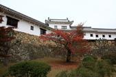 2010日本關西(1)兵庫三城:姬路、明石、神戶:0086.jpg 姬( 姫 ) 路城 , Himeji Castle
