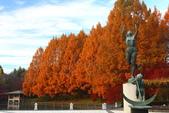 秋葉鐵道(三) 晴空鐵道:0333.JPG 栃木県中央公園