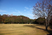 秋之旅(六) 東海秋豔:0525.jpg 浜松城公園