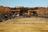 北國之春(8) 春日花海:0642-1.jpg 昭和記念公園