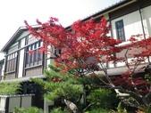 20130522日本合掌村:IMGP4071.JPG