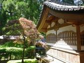 20130522日本合掌村:IMGP4365.JPG