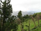 2007中秋南投之旅(9/22~9/25):清境農場