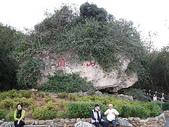 2007阿里山墾丁之旅(1/29~2/1):墾丁關山