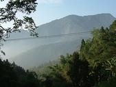 :起霧的阿里山公路兩側山巒