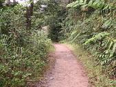2007阿里山墾丁之旅(1/29~2/1):墾丁南仁山生態保護區