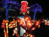 2011台灣燈會在苗栗(2/24):2011台灣燈會展示之花燈