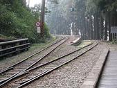 """2007阿里山墾丁之旅(1/29~2/1):阿里山森林鐵路神木車站""""之""""字型路軌"""