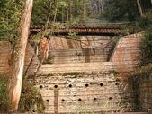 2007阿里山墾丁之旅(1/29~2/1):阿里山森林鐵路