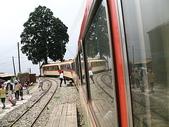 2008奮起湖阿里山之旅(8/30~8/31):行進中的阿里山森林火車