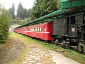 2008奮起湖阿里山之旅(8/30~8/31):阿里山森林鐵路沼平車站停放的老火車