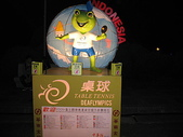 2009情人節蘭陽之旅(2/13~2/14):2009台北燈節