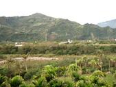 2012六天五夜環島[下](2/1~2/3):鹿鳴溫泉酒店鹿春精緻客房早晨景色