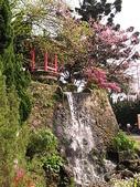2010陽明山花季暨台北燈節(3/6):陽明山公園小瀑布