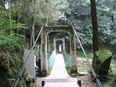 2008奮起湖阿里山之旅(8/30~8/31):阿里山吊橋