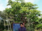 :墾丁森林遊樂區