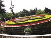2010陽明山花季暨台北燈節(3/6):陽明山花鐘