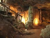 2008五天四夜環島旅行(1/30~2/3):墾丁森林遊樂區