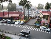 2008奮起湖阿里山之旅(8/30~8/31):阿里山車站鳥瞰森林遊樂區園區