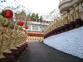 2012六天五夜環島[上](1/29~1/31):佛光山