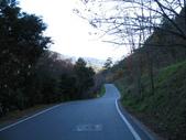 :武陵農場內道路