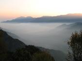 2011阿里山櫻花季二日遊(4/2~4/3):日出前的阿里山小笠原平台雲海