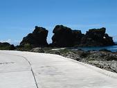 2006暑假蘭嶼之旅(7/19~7/21):蘭嶼雙獅岩