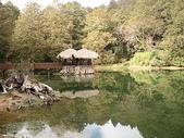2007阿里山墾丁之旅(1/29~2/1):阿里山姊妹潭