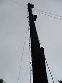 2008奮起湖阿里山之旅(8/30~8/31):阿里山集材柱