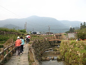 2010陽明山花季暨台北燈節(3/6):竹子湖田野風光