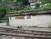 2008奮起湖阿里山之旅(8/30~8/31):阿里山森林鐵路奮起湖車站