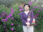 2010陽明山花季:2010陽明山花季04.JPG