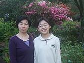 2010陽明山花季:2010陽明山花季06.JPG