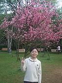 2010陽明山花季:2010陽明山花季10.jpg