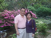 2010陽明山花季:2010陽明山花季11.JPG