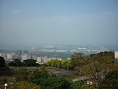 2010八里櫻花季:2010櫻花18.JPG