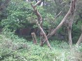 2011重返馬祖:D2南竿北竿048.JPG