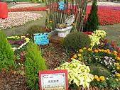99.01.04 台北花卉展:DSCN0225.JPG