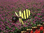 99.01.04 台北花卉展:DSCN0339.JPG