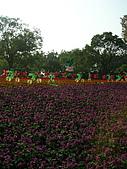 99.01.04 台北花卉展:DSCN0341.jpg