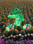 99.01.04 台北花卉展:DSCN0342.jpg