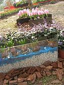 99.01.04 台北花卉展:DSCN0344.jpg