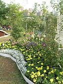 99.01.04 台北花卉展:DSCN0292.jpg