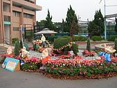 99.01.04 台北花卉展:DSCN0399.JPG