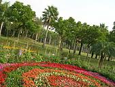 99.01.04 台北花卉展:DSCN0354.JPG