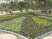 99.01.04 台北花卉展:DSCN0300.JPG