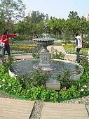 99.01.04 台北花卉展:DSCN0302.jpg