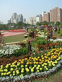 99.01.04 台北花卉展:DSCN0249.jpg